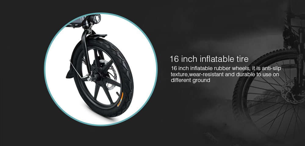 16 Inch Fiido D2 Adult Electric Bicycle 2 Wheels Electric Bicycle Mini 250W Folding Portable Electric Bike (4)
