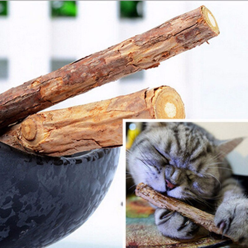 5pcs Pet Cat Kitten Wood Pure Natural Catnip Pet Cat Molar Toothpaste Stick Cat Cleaning Teeth Teeth Cat Snacks Pet Supplies set (1)