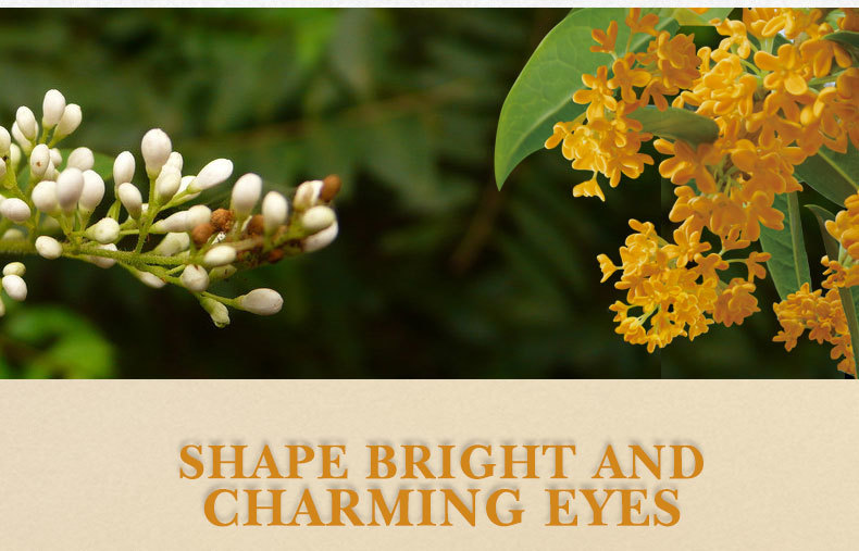 golden-osmanthus-eye-mask_07
