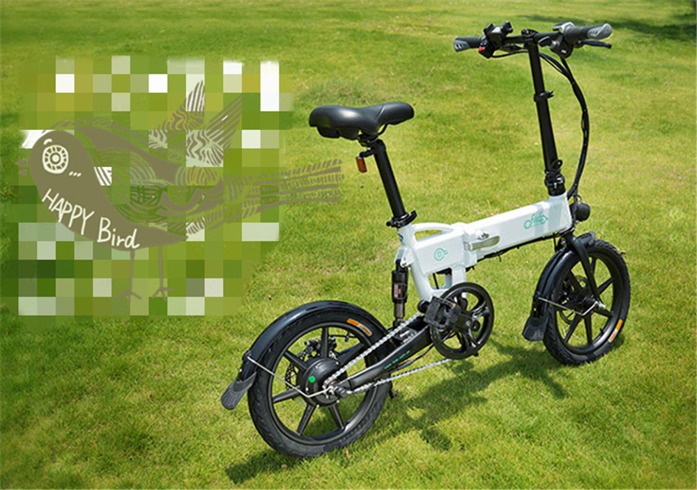 16 Inch Fiido D2 Adult Electric Bicycle 2 Wheels Electric Bicycle Mini 250W Folding Portable Electric Bike (11)