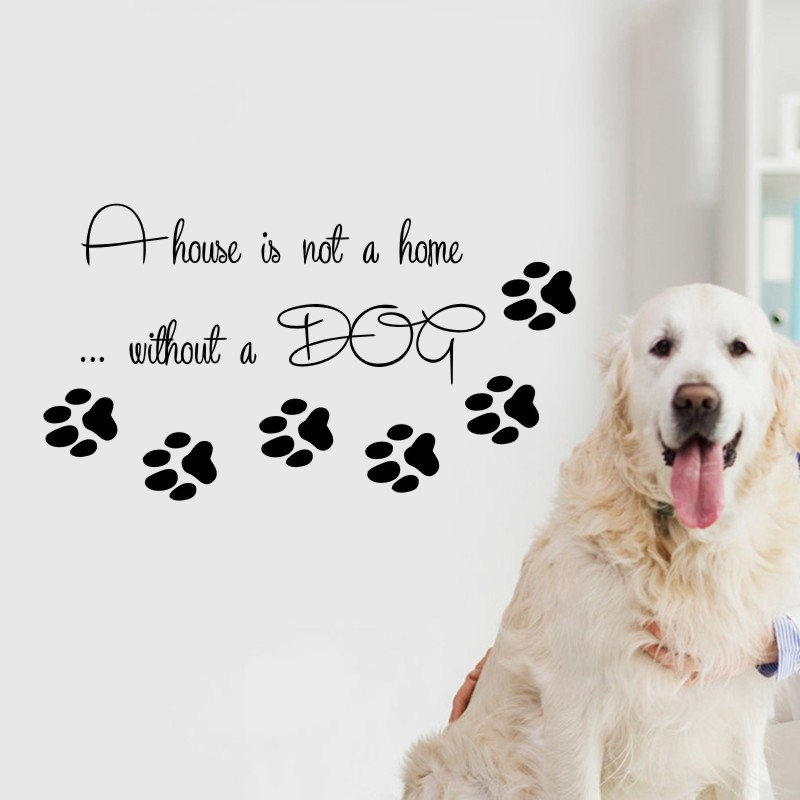 DCTAL Pet Shop Vinyl Wall Decal Dog Quote  Pet Home Interior  Mural Wall Sticker Pet Salon Room Home Decoration