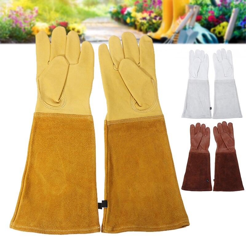 attrezzatura da apicoltura. 1 1 paio di guanti da apicoltura in pelle di capra giallo. guanti da lavoro a maniche lunghe guanti da lavoro in cotone