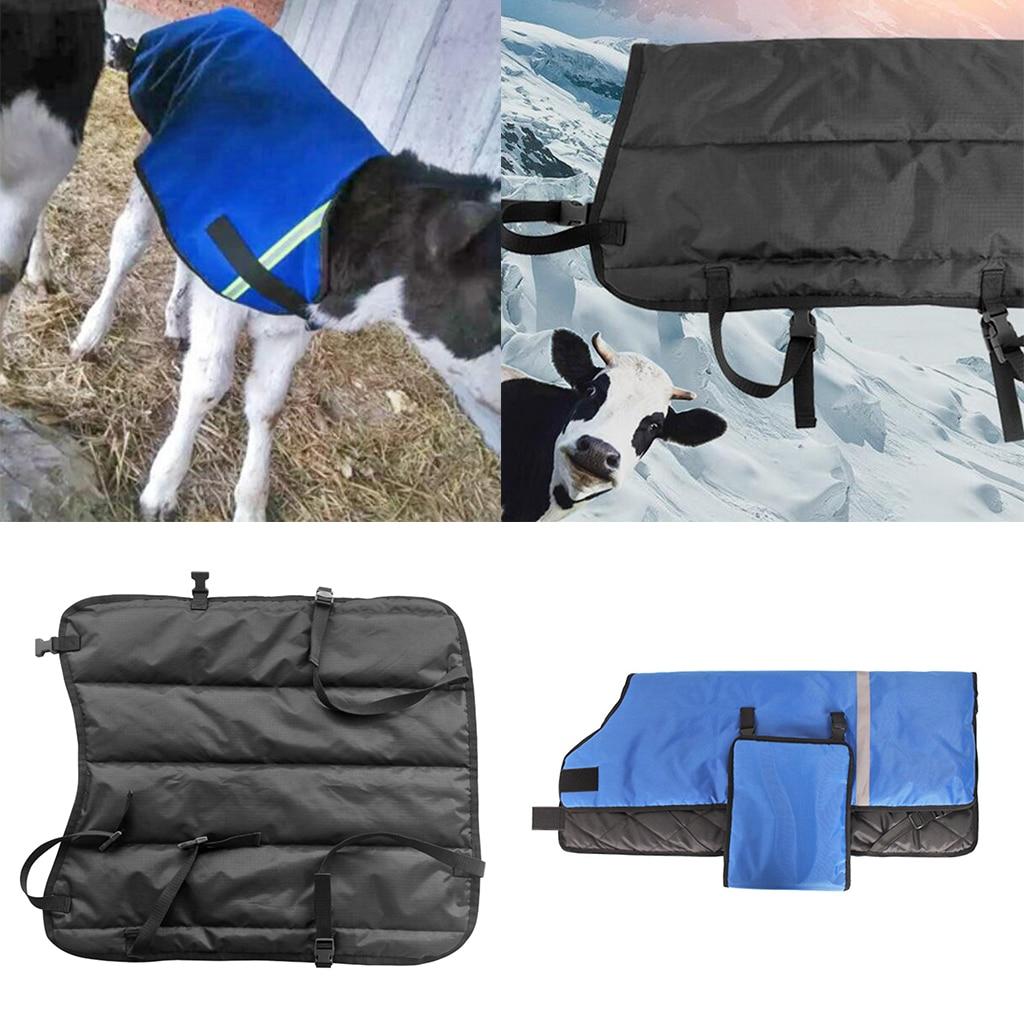 Livestock Calf Blanket, 105x85cm/41.34x33.46inch or 76x69cm/29.92x27.17inch