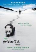 猫熊团圆路