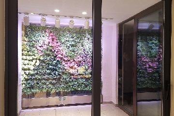 【绿城*江南里】植物墙赣州--不用美颜就很惊艳的绿植墙