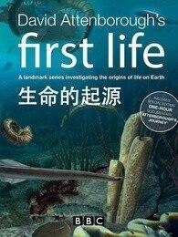 BBC:生命的起源