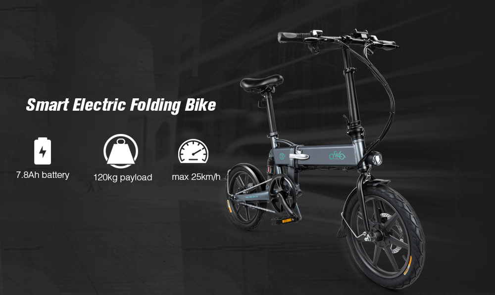 16 Inch Fiido D2 Adult Electric Bicycle 2 Wheels Electric Bicycle Mini 250W Folding Portable Electric Bike (3)