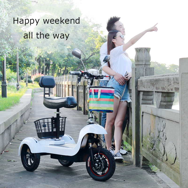 Daibot Electric Tricycle Bike 3 Wheels Electric Scooters Single Motor 500W 48V WhiteBlack Electric Scooter With Seat Adults  (10)