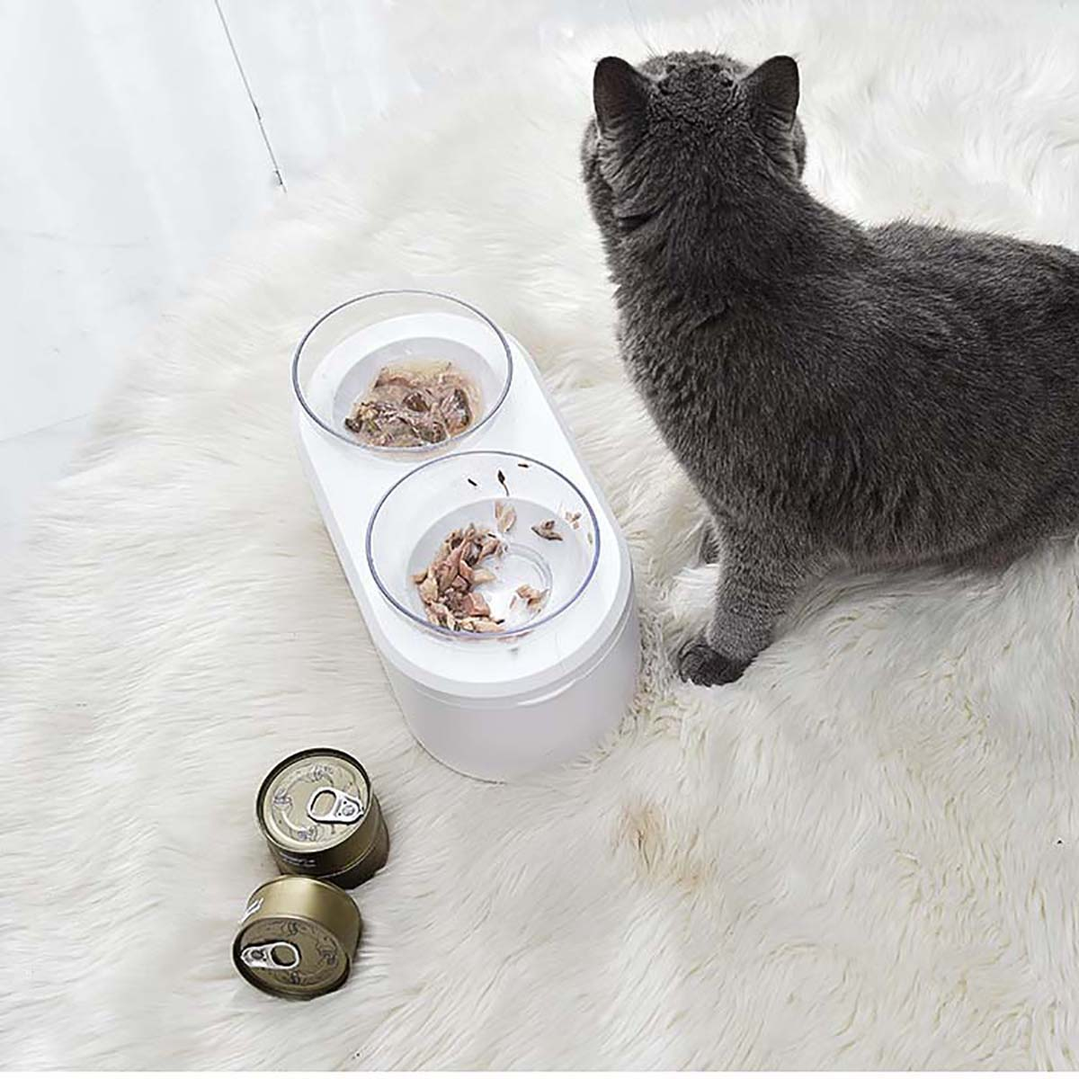 Pet Feeding Bowl Image
