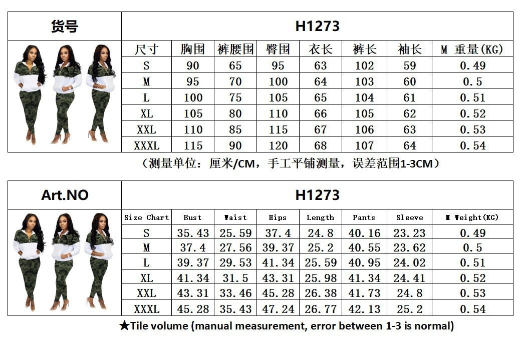H1273C.JPG