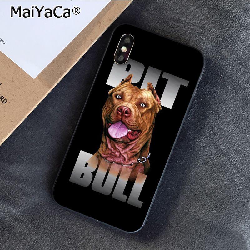 pit bull dog Pitbulls