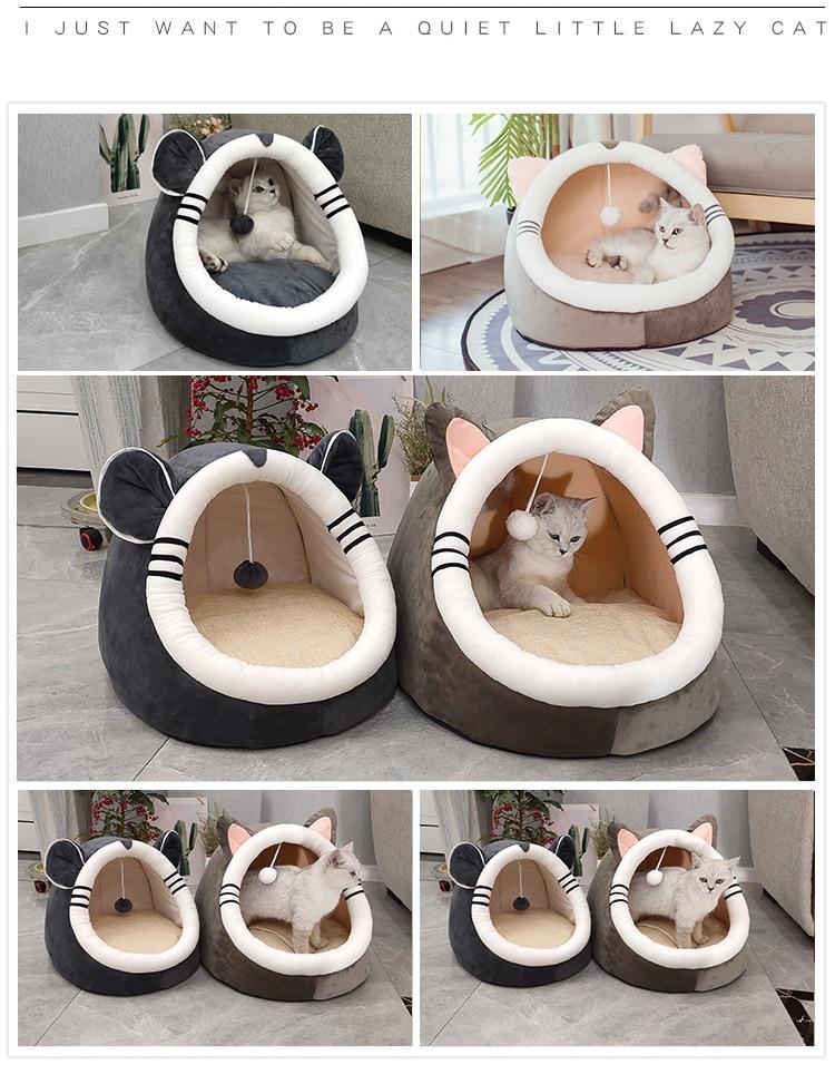 Cat Sleeping House Image