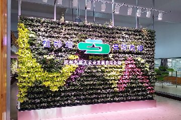 赣州九重天现代农业园绿植墙【部分移动式植物墙】