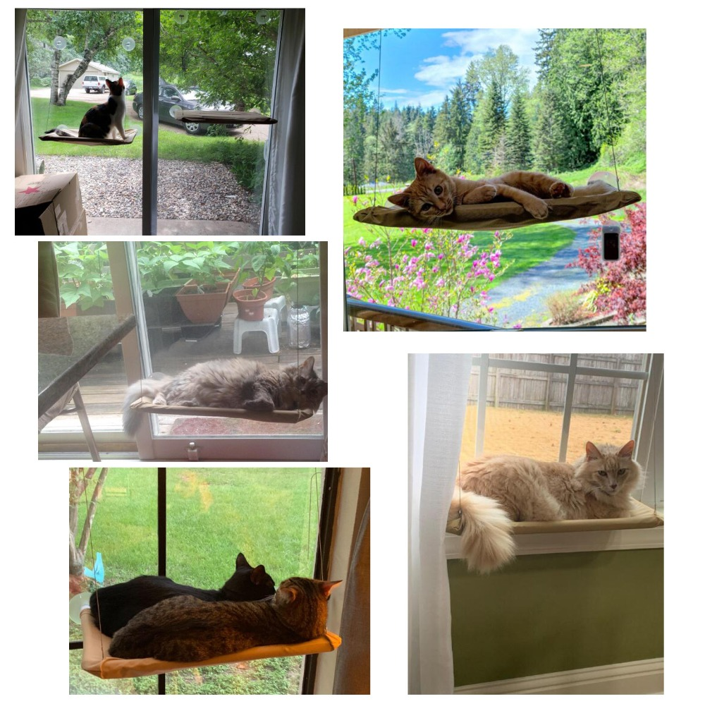 Cat Window Hammock Mount Hanging Bed Image