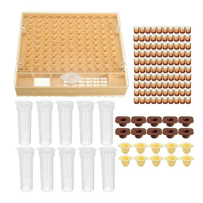 100 Cell Cups Komplette Königin Aufzucht System Bee Bienenzucht Catcher Box