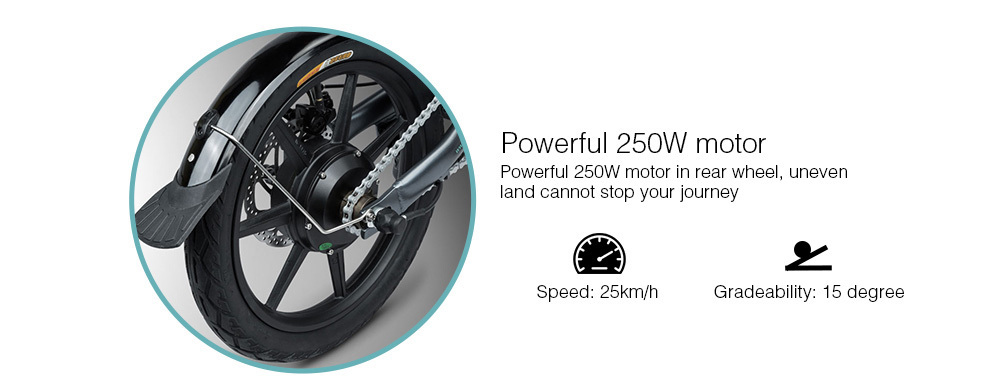 16 Inch Fiido D2 Adult Electric Bicycle 2 Wheels Electric Bicycle Mini 250W Folding Portable Electric Bike (7)