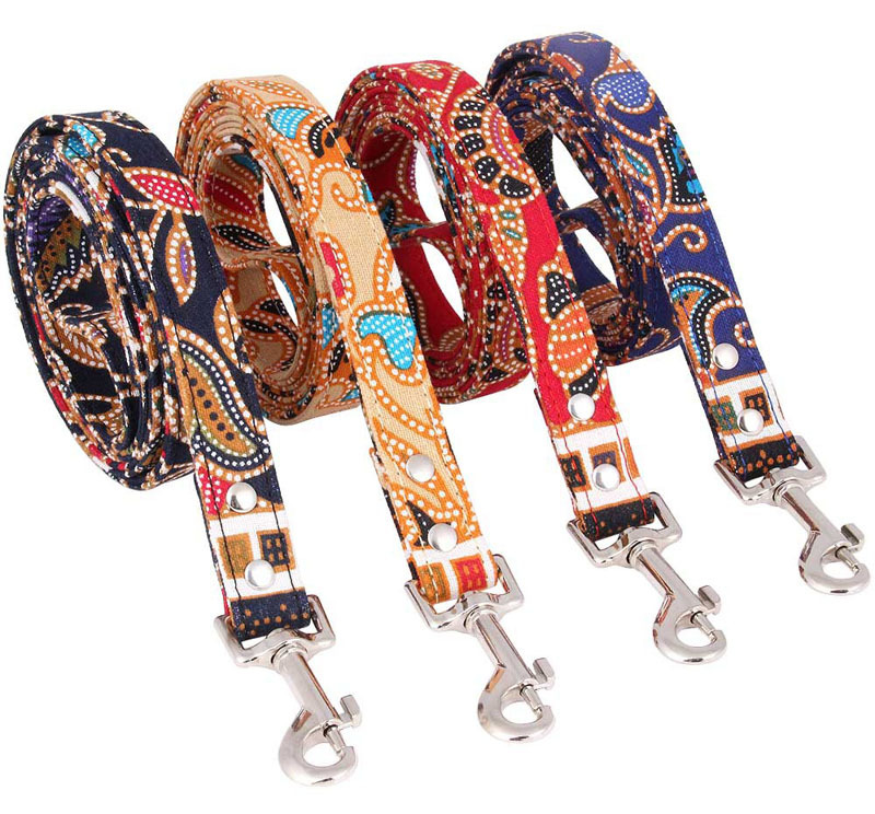 pet leash for dogs-