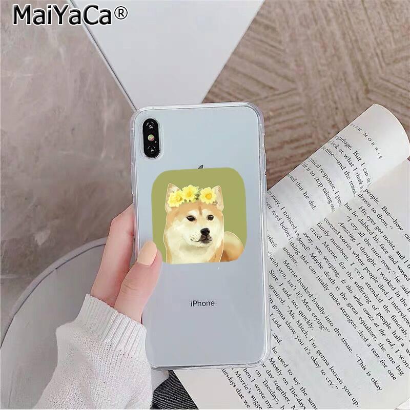 Cute animal Shiba Inu Dog