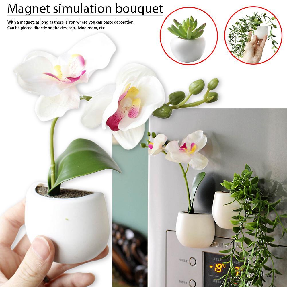 MIKI-Z Vase en Verre Suspendu Terrarium hydroponique R/éservoirs de Poissons Plante en Pot Pot de Fleurs