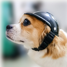 Helmet Pet-Caps Photography-Props Dogs-Decoration Animal Funny Motorcycle with Cushion