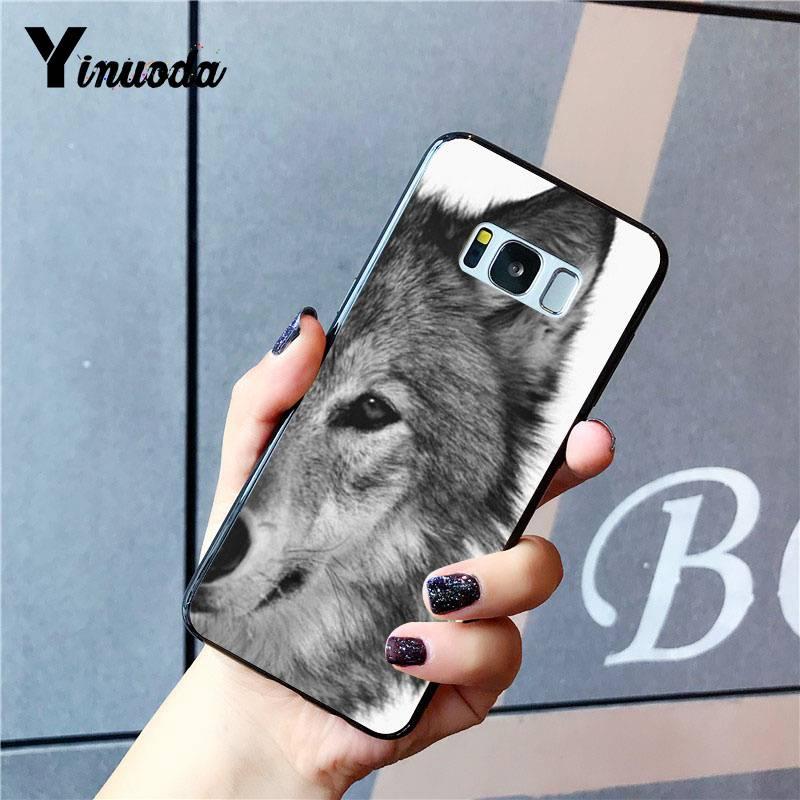 Angry Animal wolf Half Face