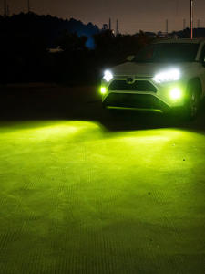 Fog-Lights Lime P13W...