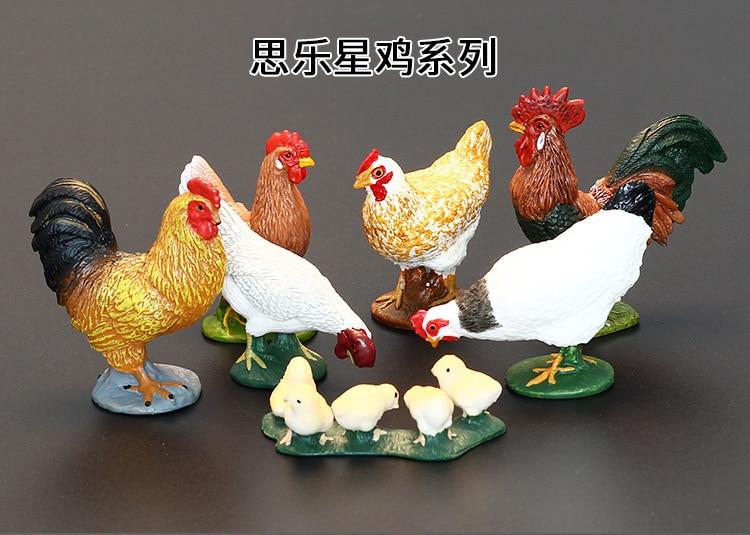 鸡_02.jpg