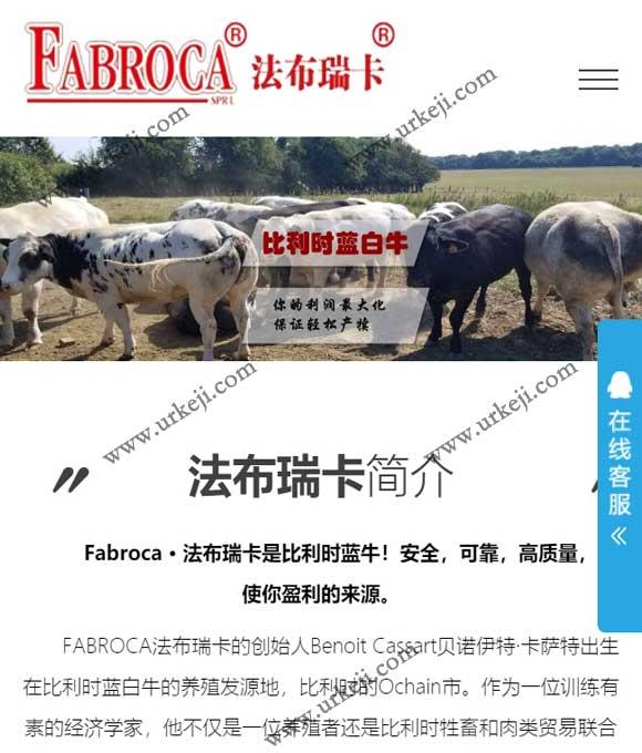 比利时蓝白牛中国种牛育种养殖基地官网建设案例