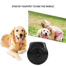 New Mini Camera Pet Dog Cat Anti-lost with LCD Screen Camera Video Recorder Collar Accessories DC 5V Black Hot Sale(China)