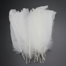 15-20cm Natural White Feather Decoration Wedding DIY Material Accessories 12pcs/lot 077031(China)