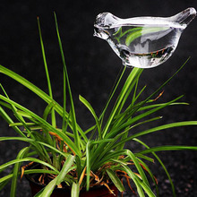 Bird Shape Design Hand Blown Clear Glass Self Watering mini Globes Small Plant Watering Bulbs Aqua cute water W5