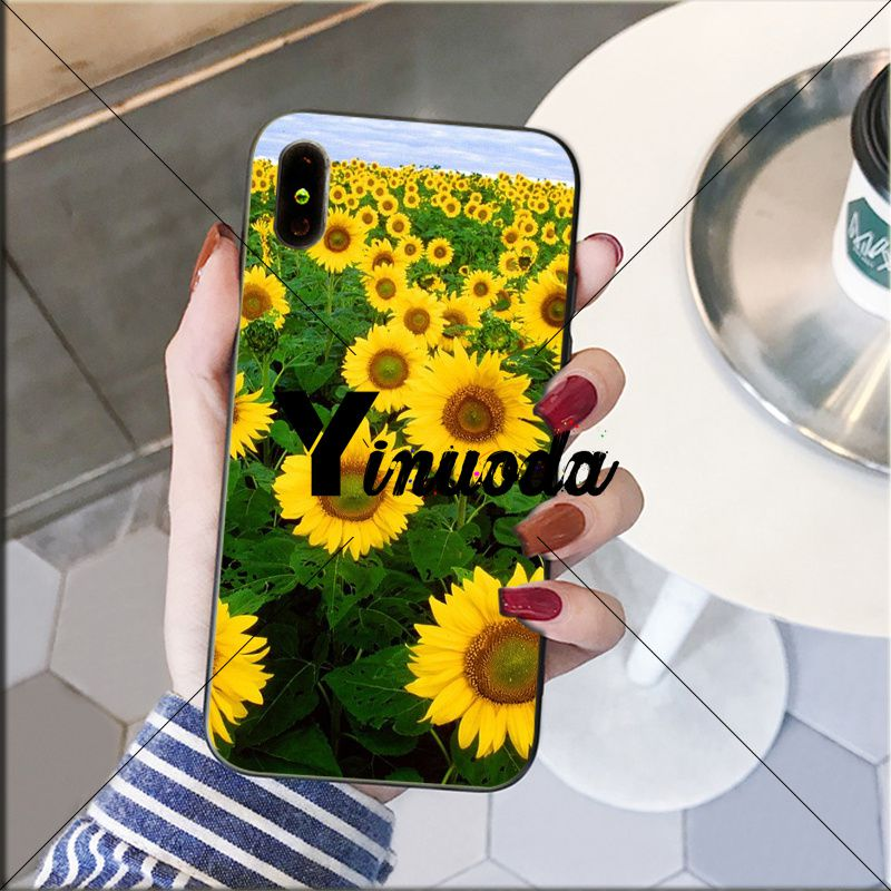 Yellow flower Small daisy sunflower