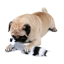 Dog Toy Squeaking Squirrel Style Dog Toy Plush Toy for Pet Dogs Chew Aqueaker Squeaky Plush Sound Duck Toy Design for Dogs(China)