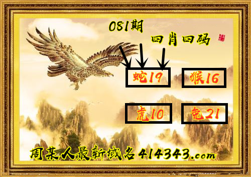 HTB1.835aKH2gK0jSZFEq6AqMpXaJ.jpg (500×352)