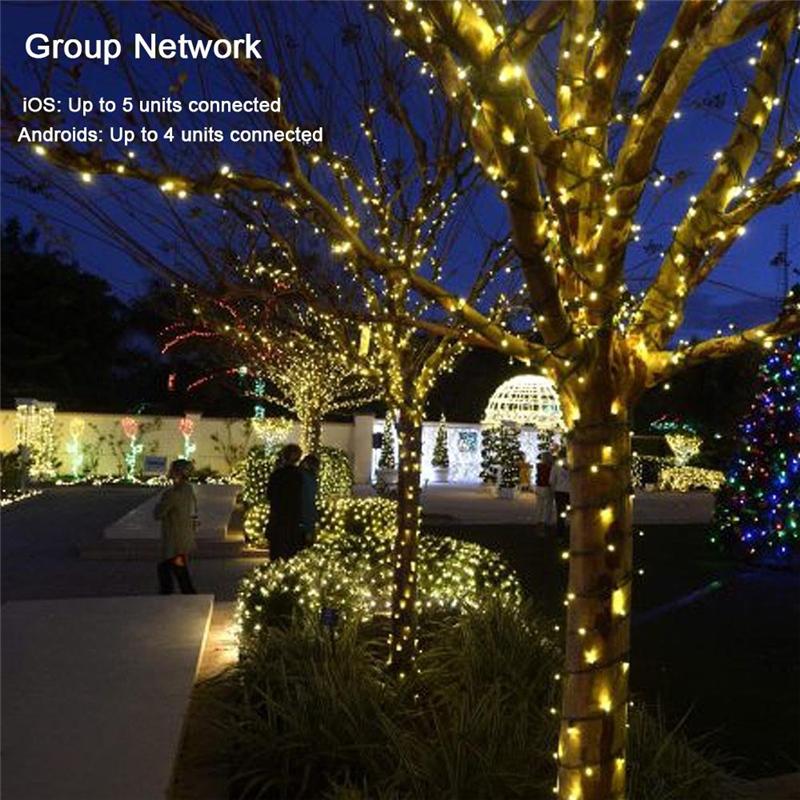 Dimmable LED Christmas Lights (12)