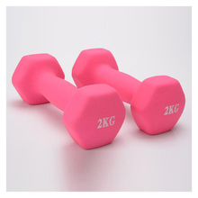 2kg women Dumb bells Fitness exercise Dumb-bells weight Slimming body(China)