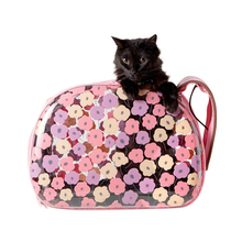 Luxury Cat Bags For Pets Clear Fashion Outdoor Travel Puppies Small Animals Carrier Carrying Transportation Handbag Cage Product(China)