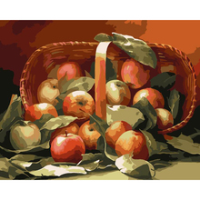 DIY Coloring Pictures Paint By Numbers Digital Oil Painting On Canvas handwork gift set of apple Painting By Numbers