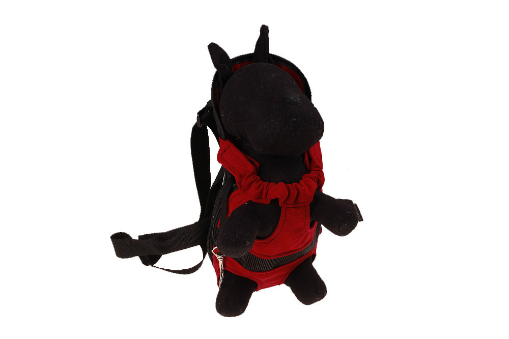 Pet backpack (30)
