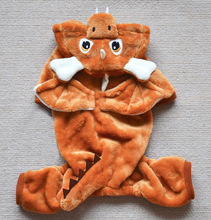 Installed new winter small dragon turned pet clothes pet clothes Teddy dog supplies