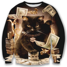 Nice model hoodies men/women 3d sweatshirt funny print big dollars cat and golden flowers hoodies autumn tops Cartoon jumper
