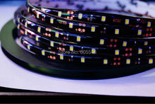 [Seven Neon]Free DHL shipping 50meters Black FPBC board white/WW/RED/Blue/yellow 60leds/meter IP65 waterproof 3528 led smd strip(China)