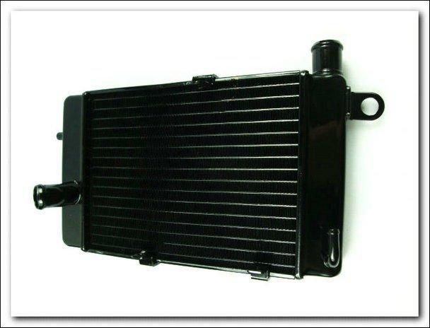 Motorcycle Radiator For Aprilia TUONO1000R TUONO1000 TUONO RSV1000 02-05 Aluminium Radiator Right New<br><br>Aliexpress