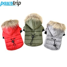 Pawstrip 5 Size Pet Dog Coat Winter Warm Small Dog Clothes For Chihuahua Soft Fur Hood Puppy Jacket Clothing(China)