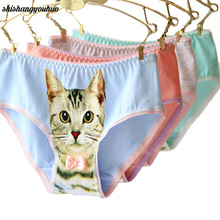 Buy Hot Selling Cotton Panties Women's Plus Size Underwear Briefs 3D Printing Panty Cat Panties Sexy Girls Intimates fashion CM