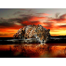 5d diy diamond leopard pattern Cross Stitch diamond painting square animal embroidery beads patterns picture of rhinestones(China)