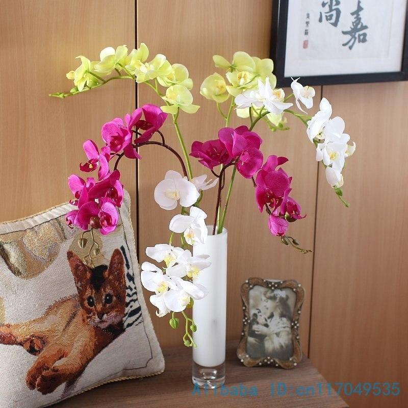 Орхидея девушке в подарок 56