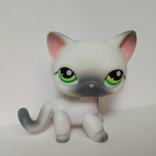 Pet Shop Animal Doll LPS Figure For Child Toy Boy  Short Hair Cat  DWA287