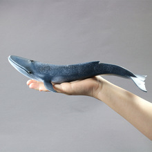 Hot toys for children:Marine biological model toy whale, PVC plastic, do not fade, boys for toys,girl for toys(China)