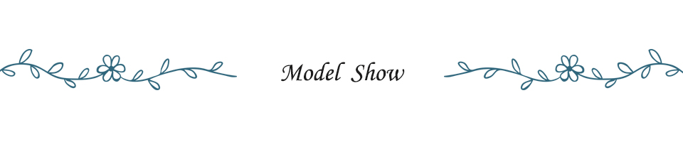 2.Model Show